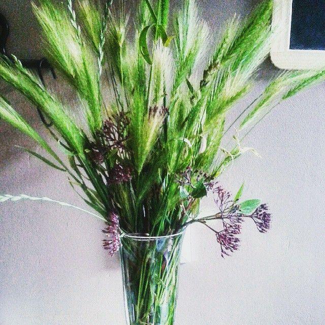 90e366b353ec1f bukiet#kłosy #zieleń #kompozycja #bouquet #grass #green narwałam po ...