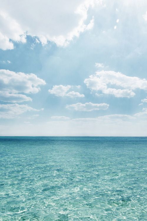 Indian Ocean Zanzibar Billeder Tur Og Inspiration