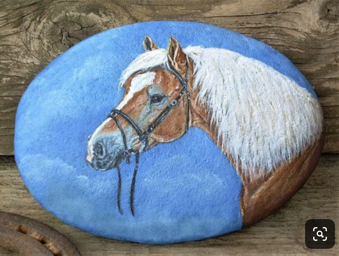 Pin On Painted Rock Animals