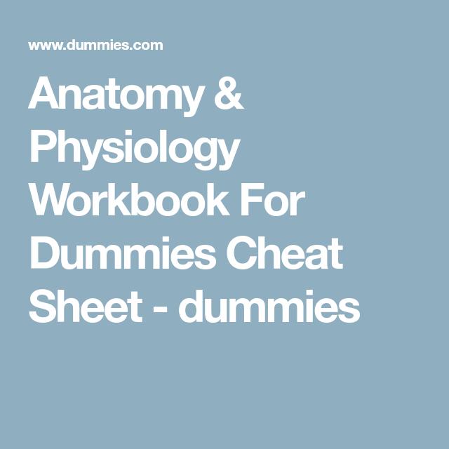 Anatomy Physiology Workbook For Dummies Cheat Sheet Dummies A