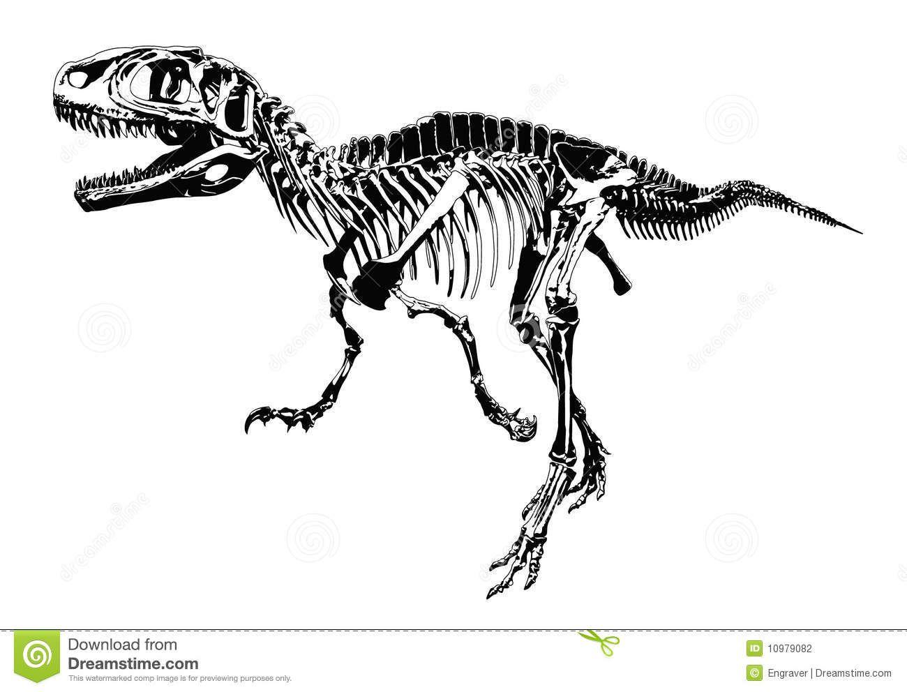 poster dino skelet - Google zoeken | Dino\'s | Pinterest | Dibujo