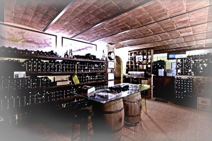 the wine cellar where we love to give you an introduction to the art of drinking wine at fontanaro