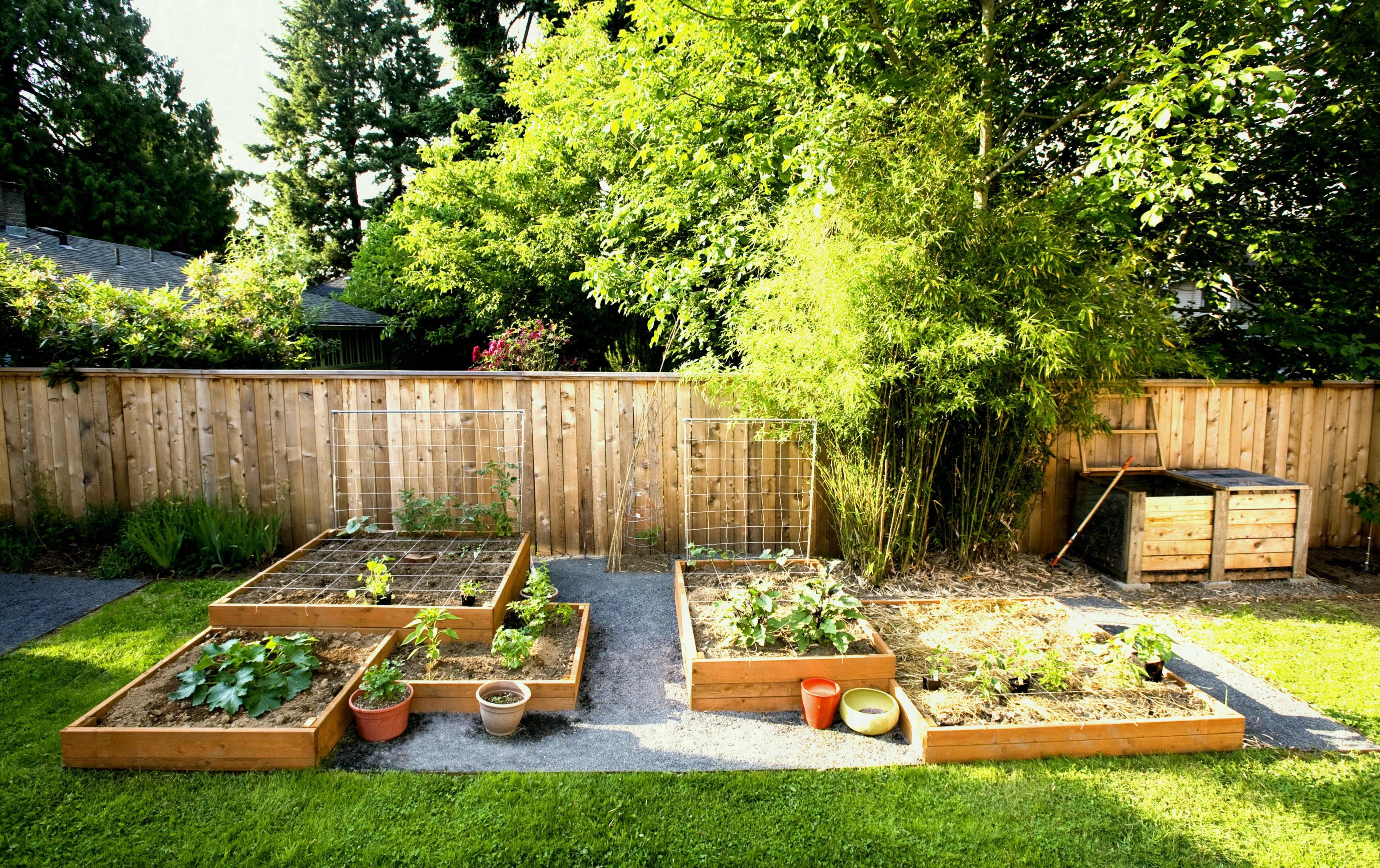 Brillian Creative Vegetable Garden Ideas Diy Backyard Landscaping Patio Landscaping Patio Landscaping Ideas On A Budget