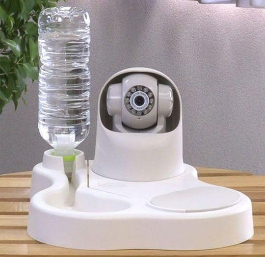 Remoca Dog Food Bowl Camera Tom Gross Bowl Camera Dog Food