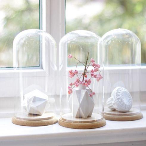 Campana de cristal-Glass bell jar