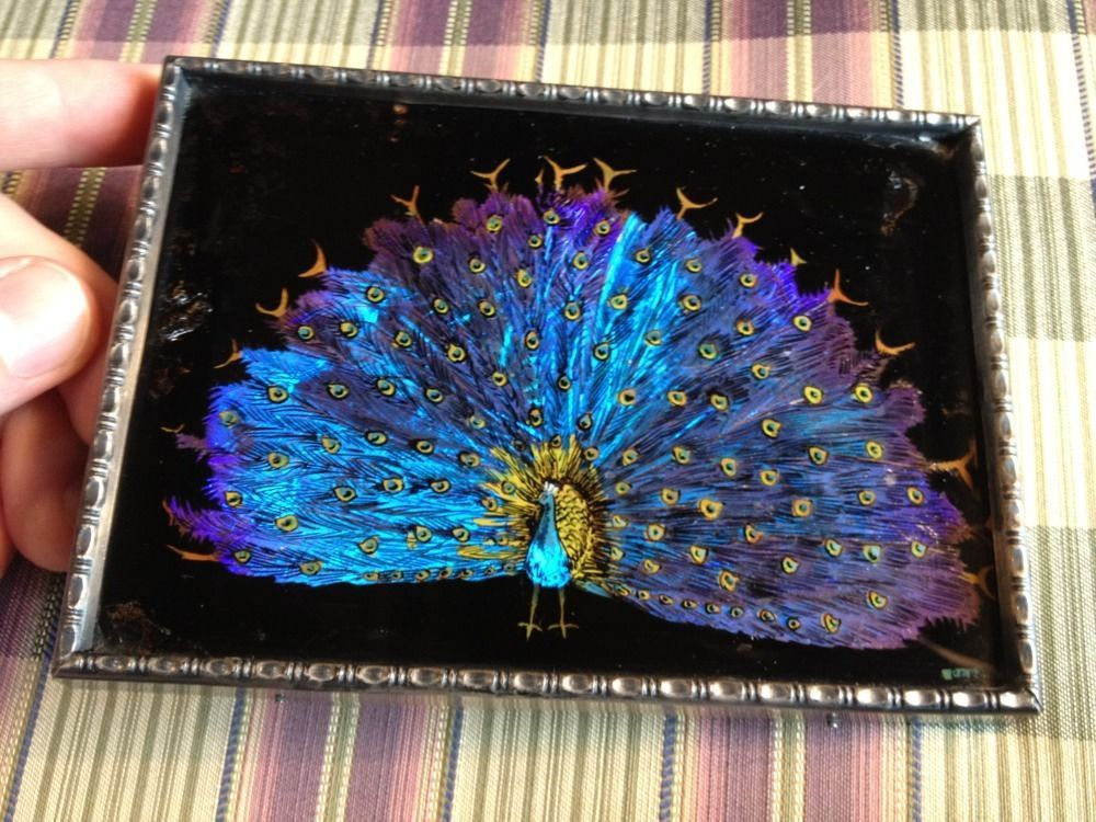 Art Deco Butterfly Wing Art Small Framed Picture Beautiful Peacock