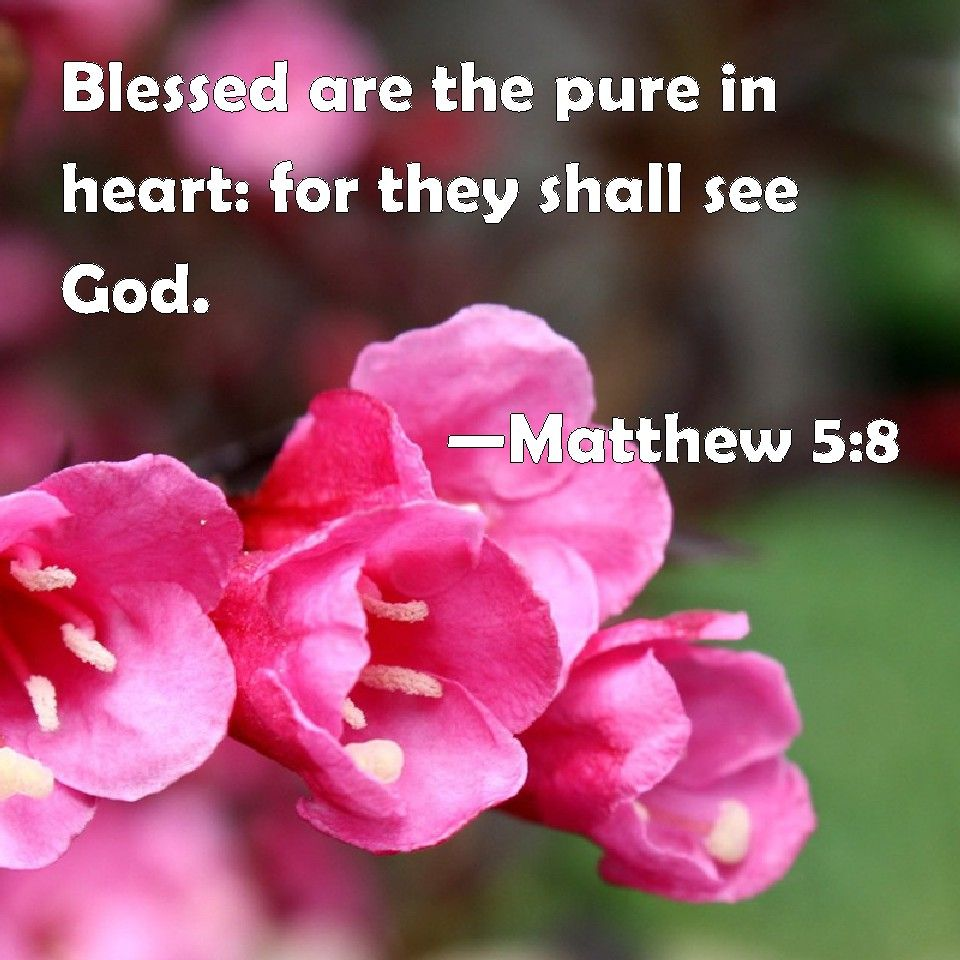 Matthew 58 the scripture verse that goes with the meaning of matthew 58 the scripture verse that goes with the meaning of negle Images