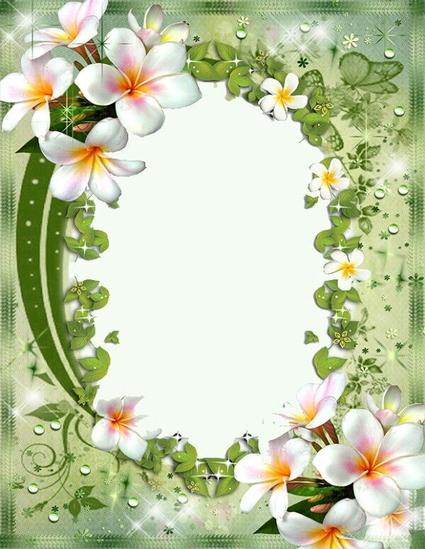 Floral Green White Flowers Flower Frame Flower Border
