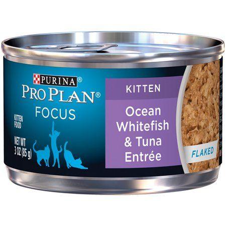 Pets Cat Food Canned Cat Food Kitten Food