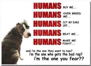 I'm the one you fear? Stop BSL! Stop ignorance!
