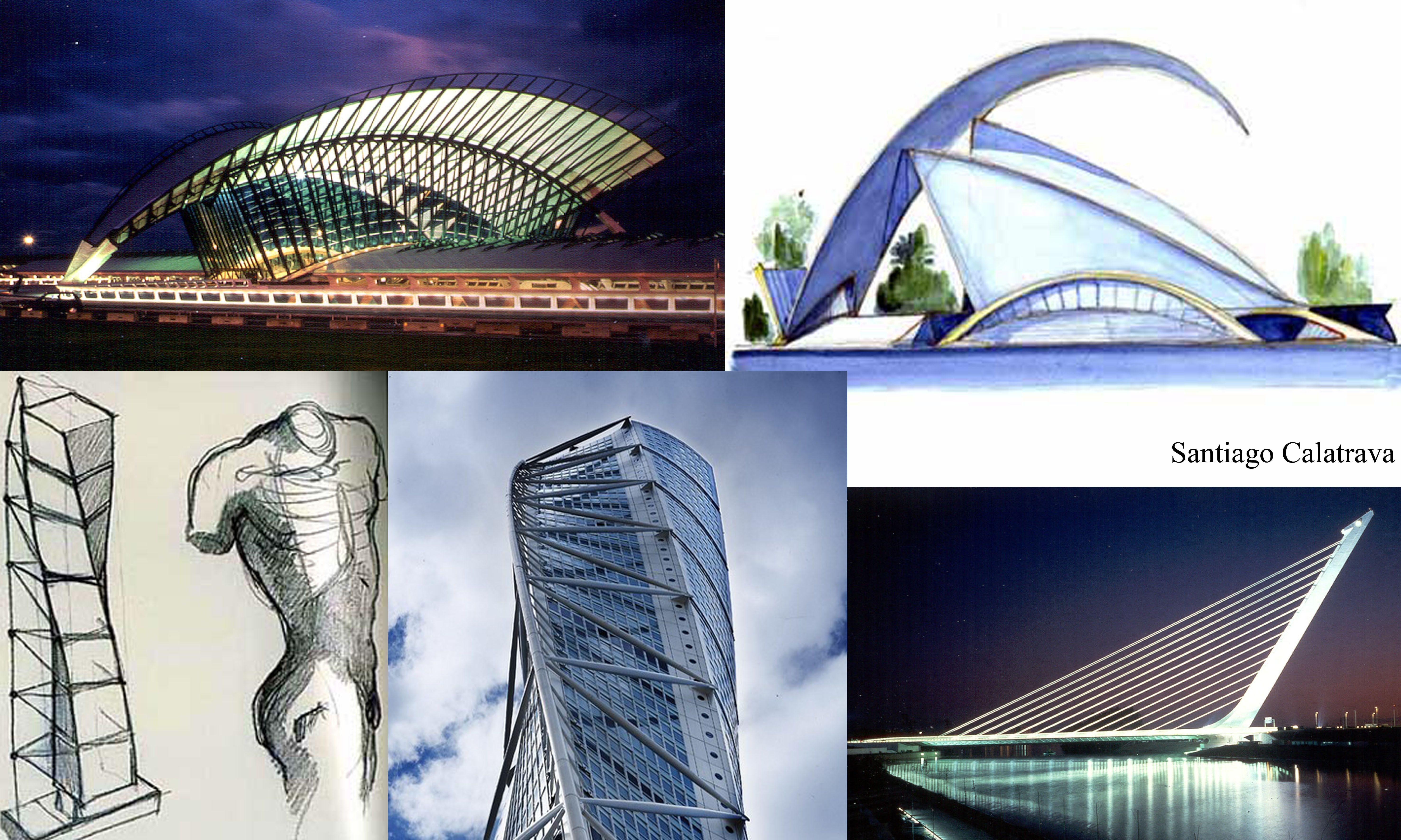 сторонние программы бионика в архитектуре фото и описание располагаются санях спине