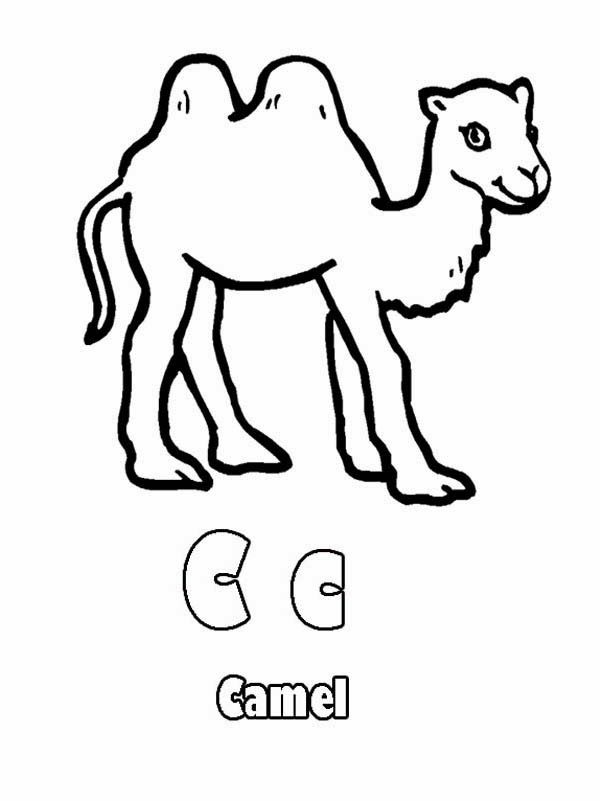 Miss alphabet coloring pages ~ Alphabet C Is For Cat Coloring Pages | Camels | Alphabet ...