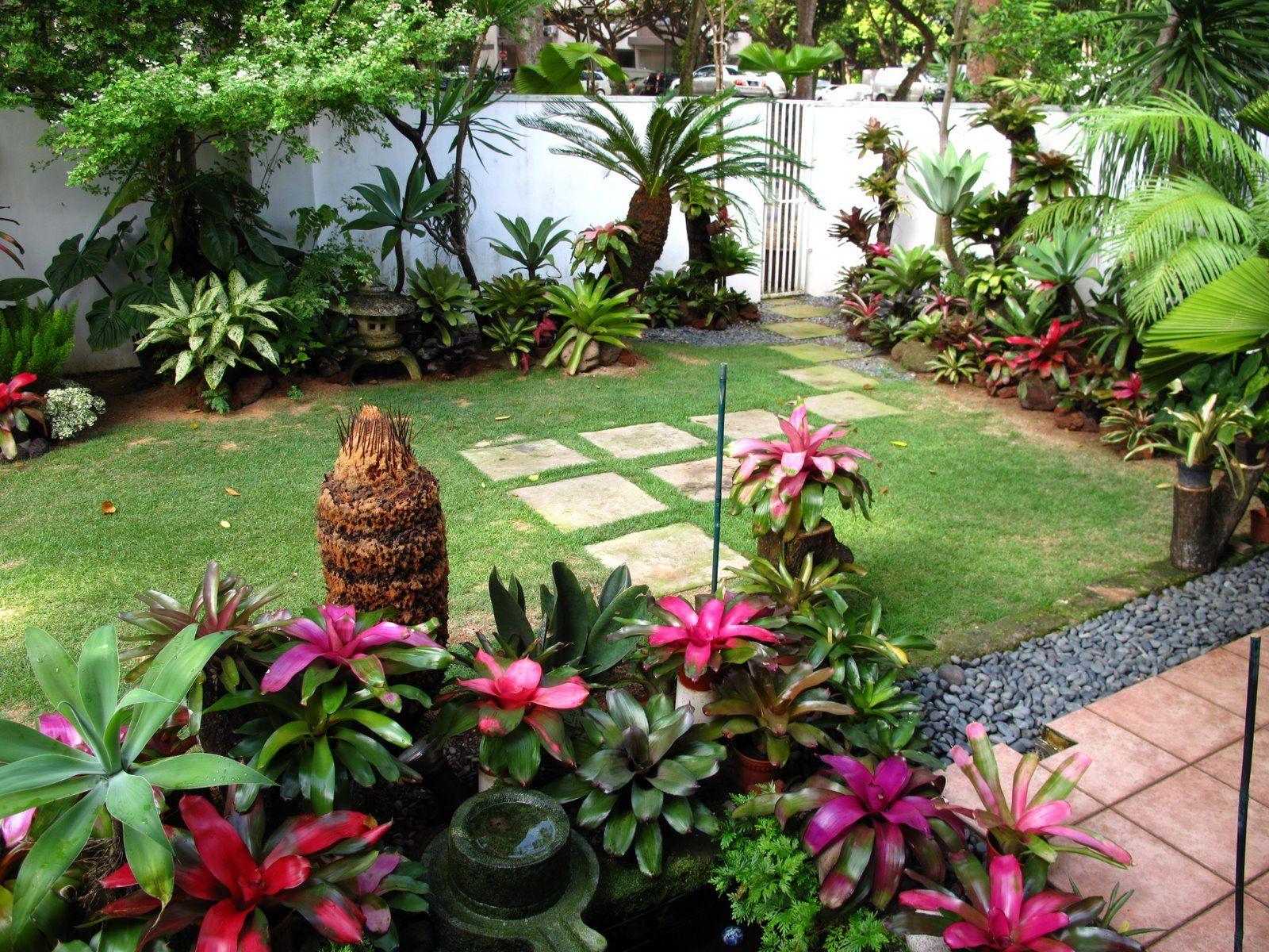 Prarlu0026#39;s bromeliad garden Singapore from journey through paradise bromeliads | Garden design ...