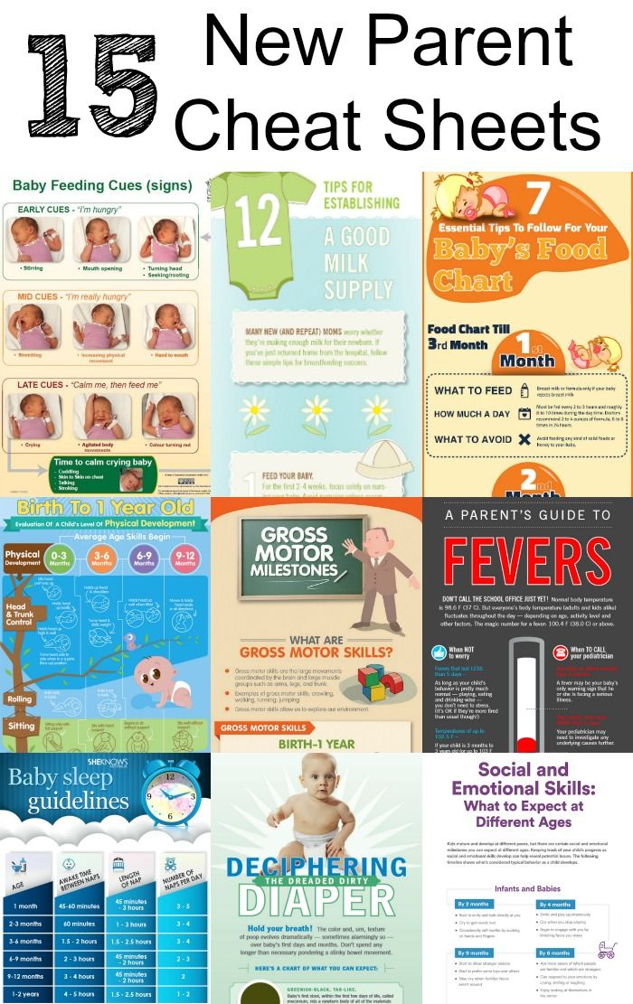 Great New Parent Cheat Sheets  Baby Feeding Guide Food