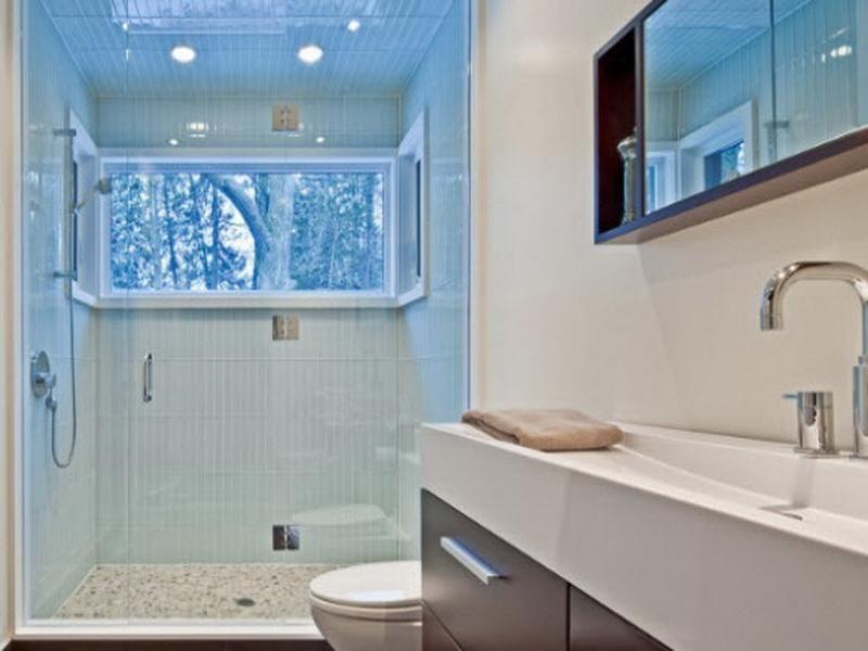 20 Most Popular Basement Bathroom Ideas Pictures Remodel And New Basement Bathroom Remodeling Design Ideas