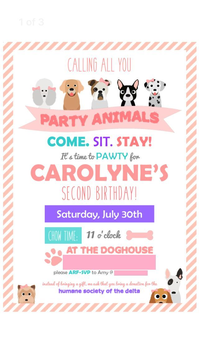 Carolyne\'s Puppy Party | Puppy party and Birthdays