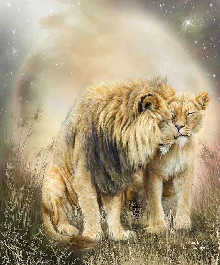 Lion Kiss ~ Carol Cavalaris