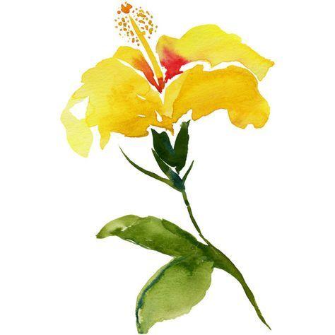 Yellow Hibiscus Watercolor art, island chic, coastal chic, giclee ...