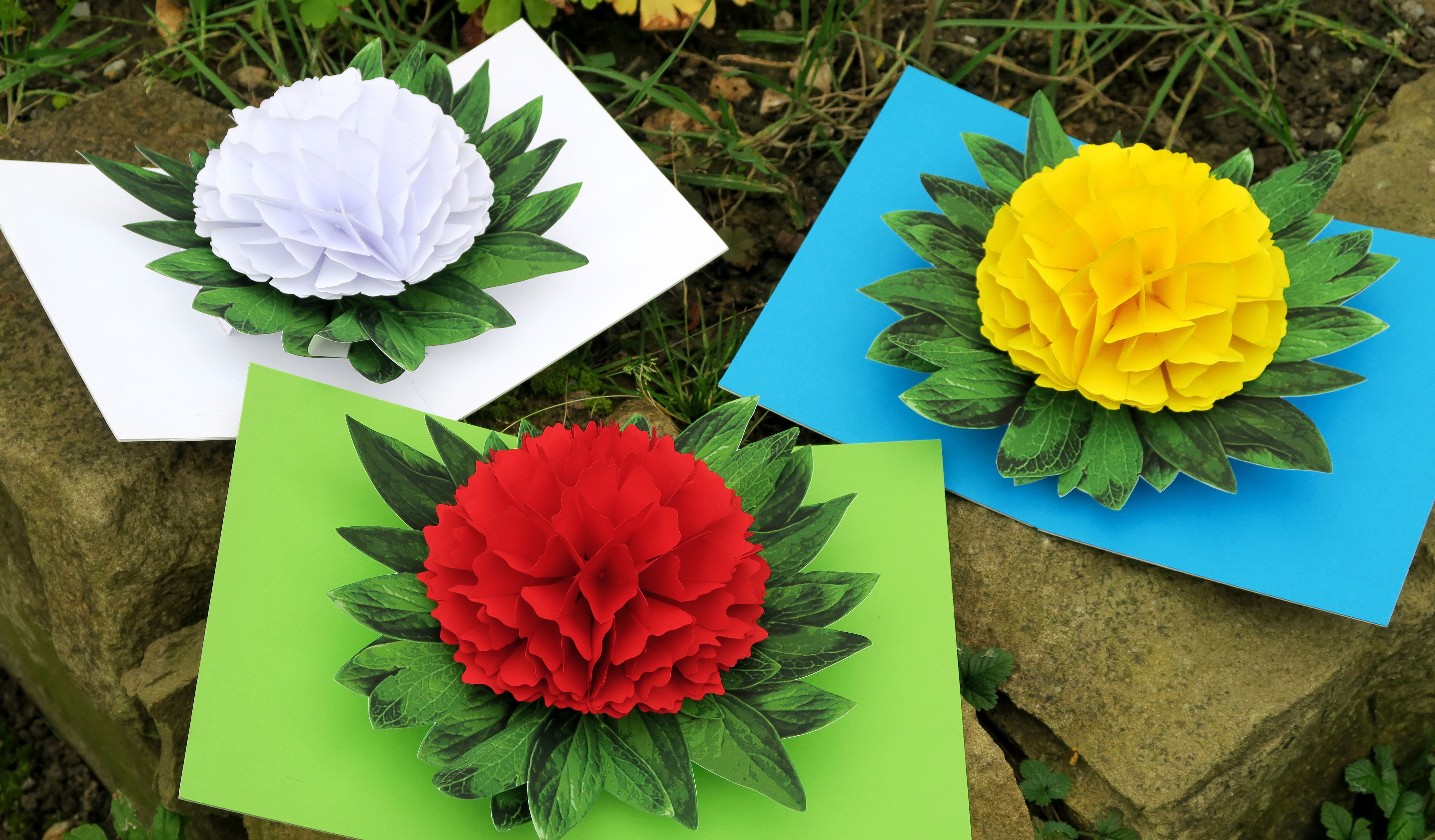 Originally I Had Planned To Create A Red Peony That Looks As Real As Possible But Then I Noticed That Thi Pop Up Flower Cards Pop Up Cards Paper Crafts Cards