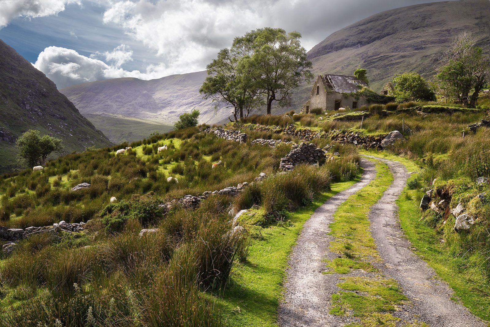The Black Valley, County Kerry