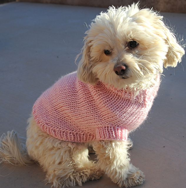 Ravelry: Bosco\'s Maddie\'s meditation sweater Caron simply soft | For ...