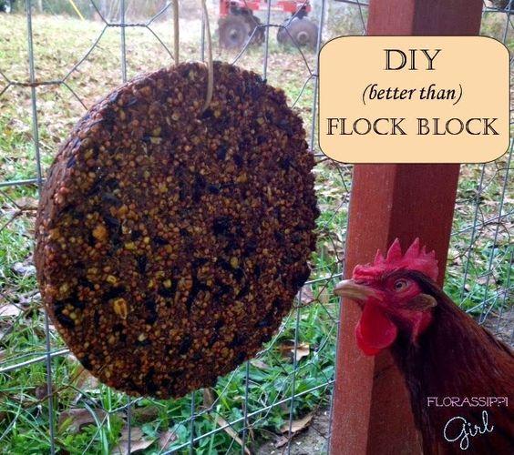 Florassippi Girl DIY (better than) Flock Block Chicken