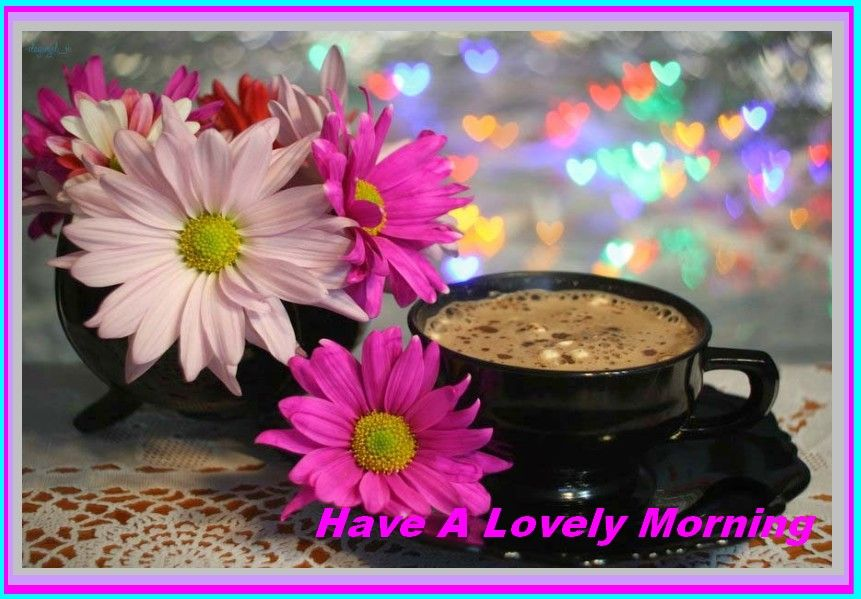 Good Morning Wishes With Beautiful Flowers Images : Beautiful good morning images with flowers