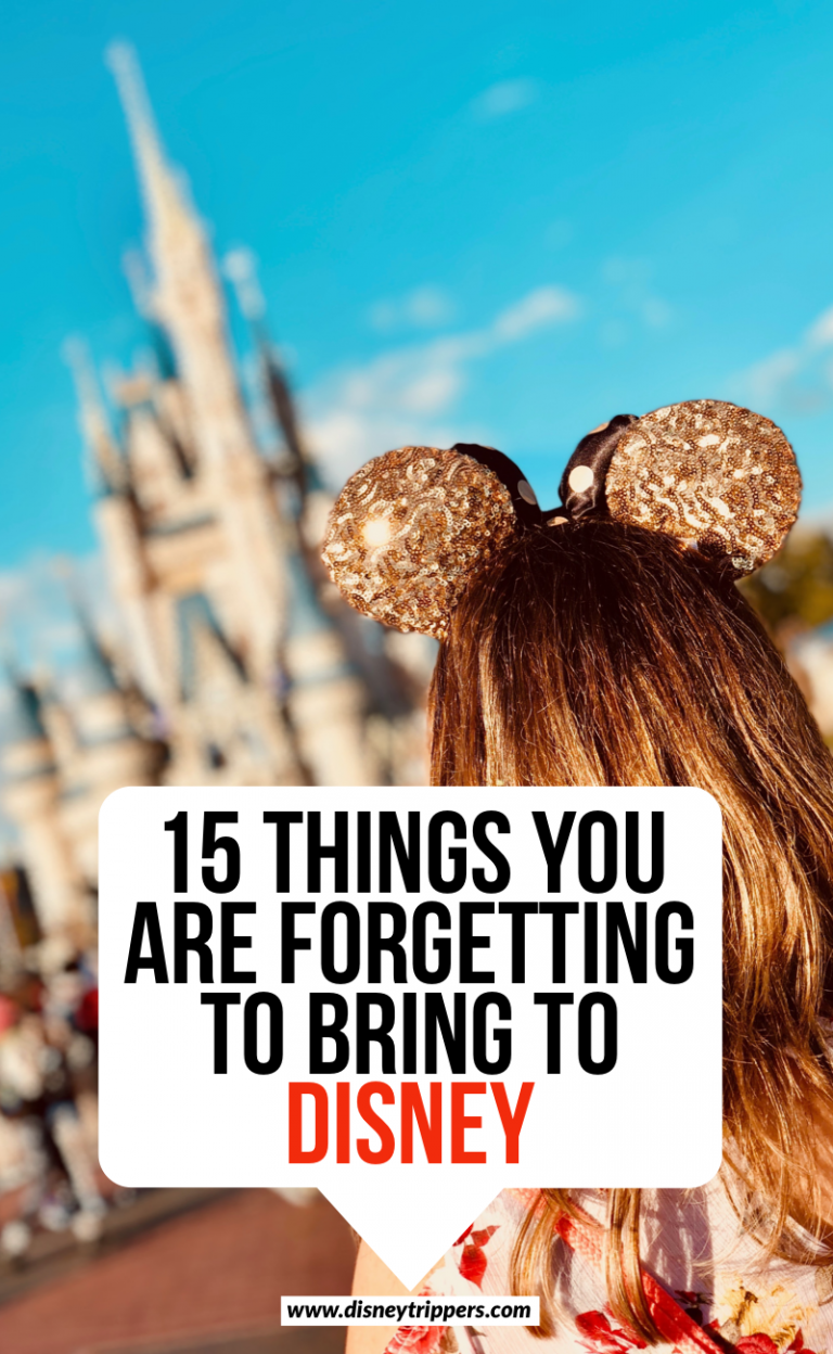 15 Things You Are Forgetting To Bring To Disney | how to pack your bag for a day…