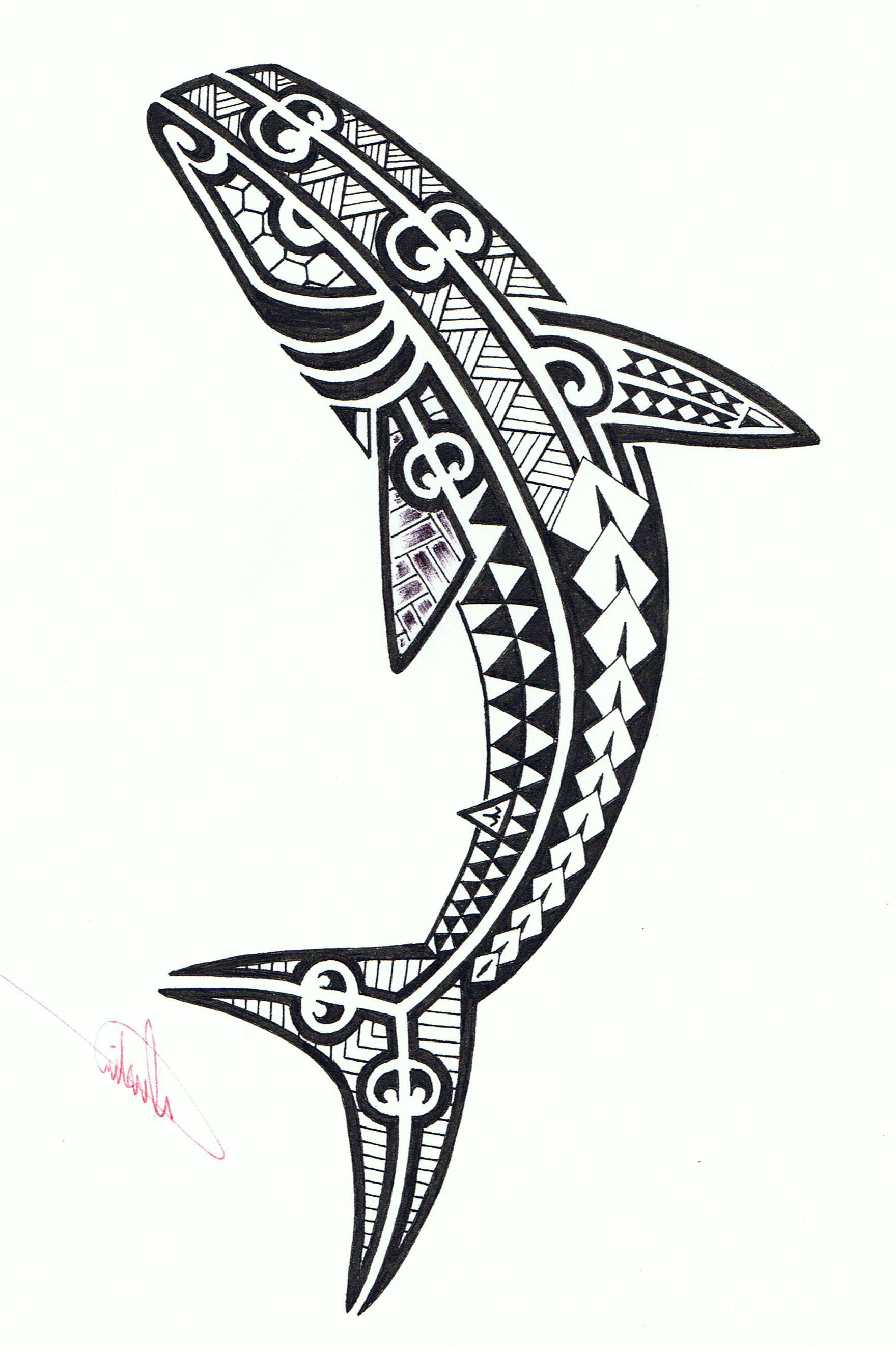 hawaiian tribal tattoo shark tribal shark tattoo pictures cool rh pinterest com polynesian shark tattoo images polynesian tattoo shark teeth meaning