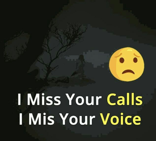 I Miss You So Much I Wish I Could Call You Everyday But I Dont