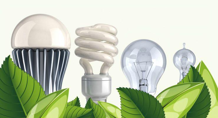 DeltonHoldings   La empresa ecológica especializada en Led's
