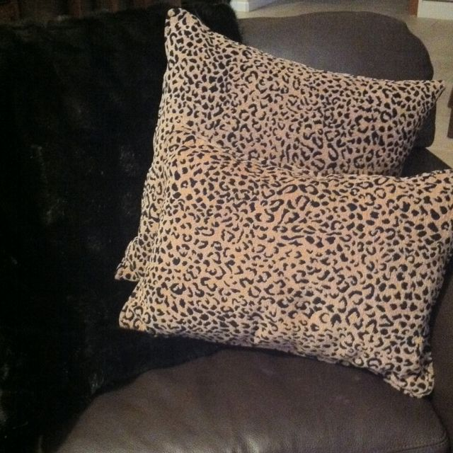 Cheetah Cheetah | Cheetahh stuff! | Cheetah bedroom, Panda ...