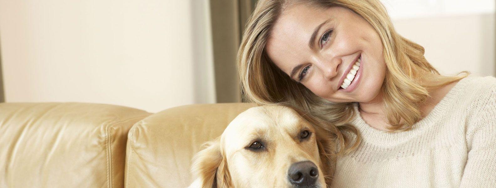 Puppywood Pet Resort Dog Boarding Cincinnates Ohio Dog Smells Dogs Dog Cat