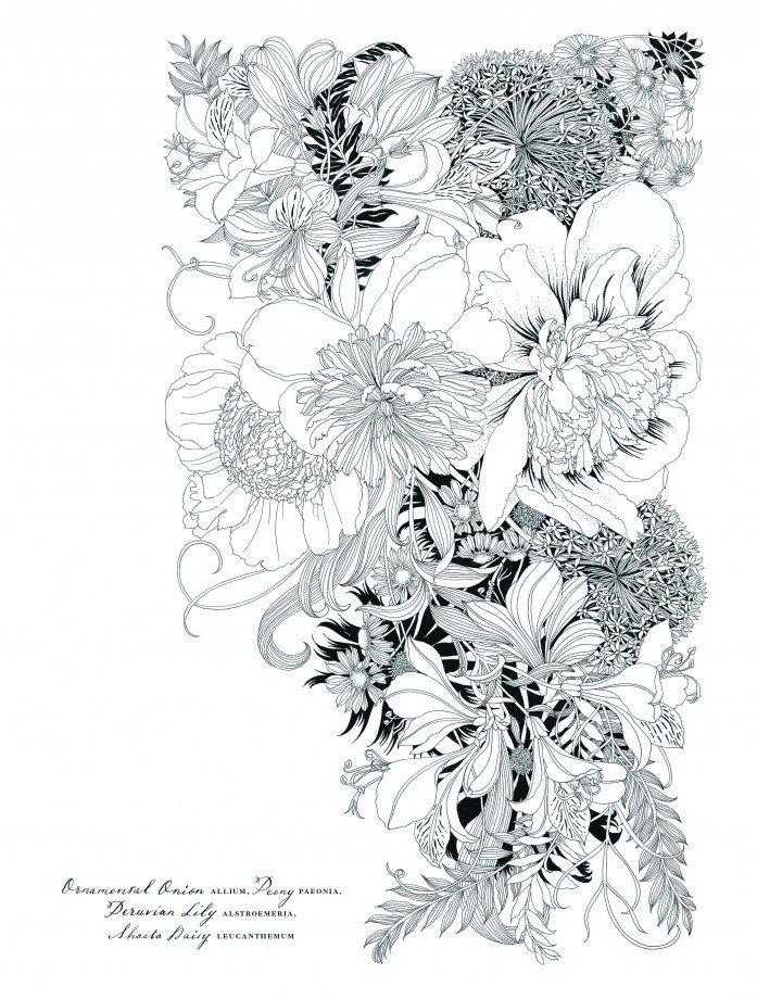 9781780677767.in07   Color me   Pinterest   Pintar y Flores