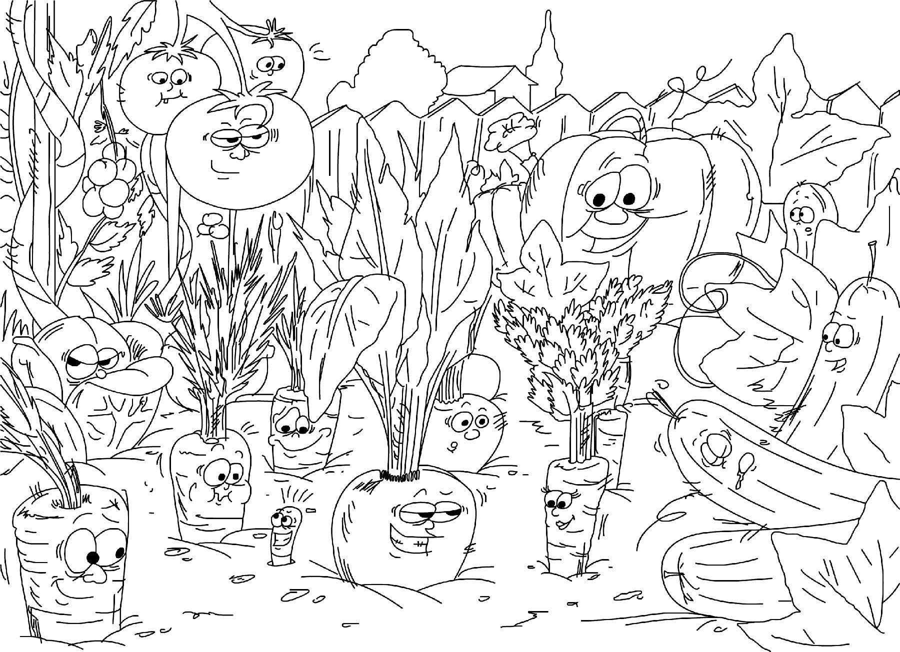 Photos coloriage jardin potager coloriage du potager - Dessin de potager ...