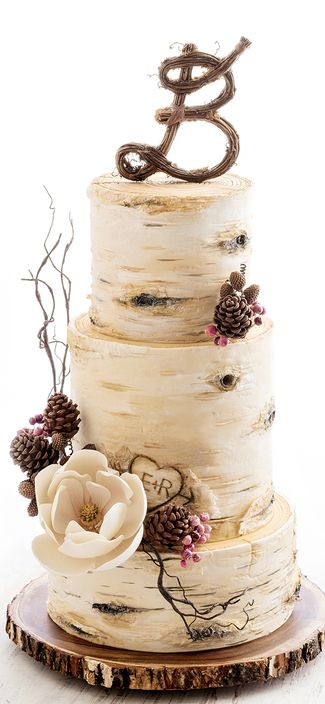 Birch Tree Wedding Cake | Weddings | Pinterest | Tree wedding cakes ...