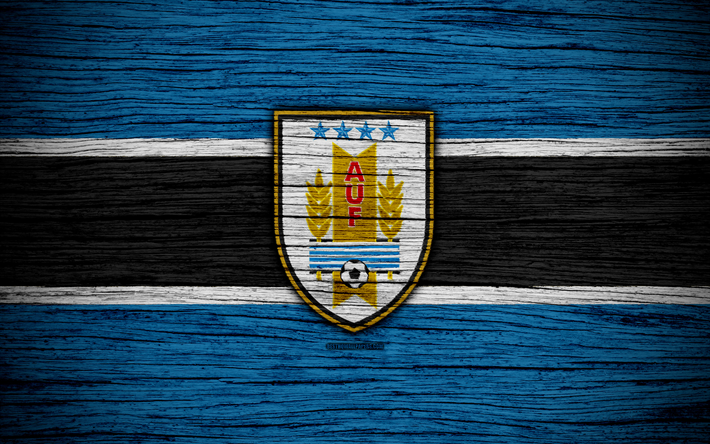 Honduras National Football Team Zoom Background 6