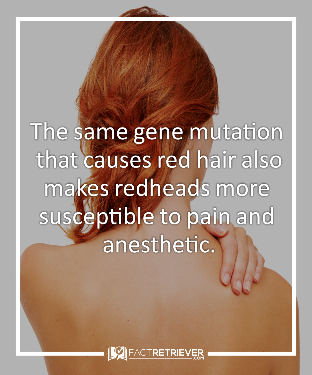 42 Interesting Facts About Redheads Factretriever Com Redhead Facts Redhead Quotes Redheads
