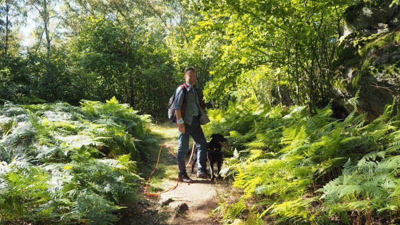 Waldviertel: Meine 20 schönsten Ausflugsziele für den Herbst
