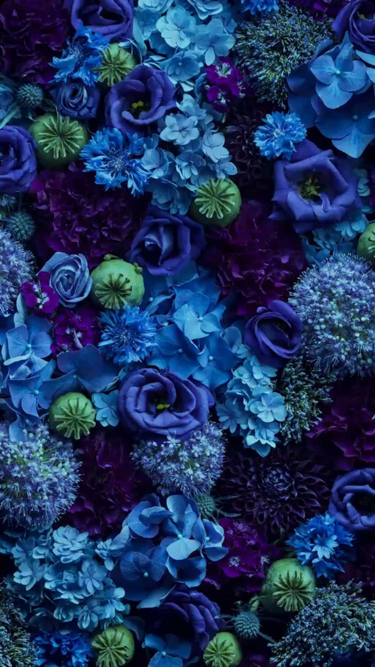 Dark Blue Flowers Aesthetic