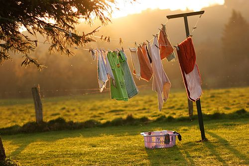 There is a calming effect watching clothes hanging on a line to dry.