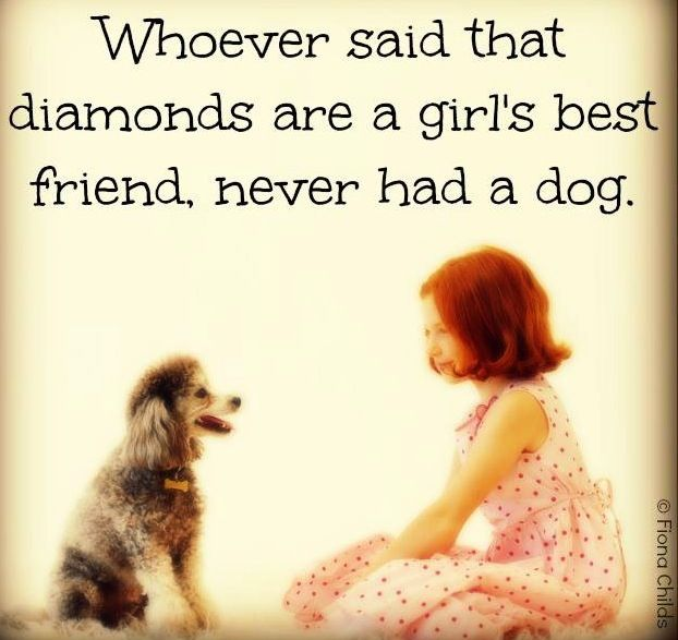 Quotes About Dog Friendship Custom Dog Quote Via Www.facebookfionachilds  Poodle Paraphinalia