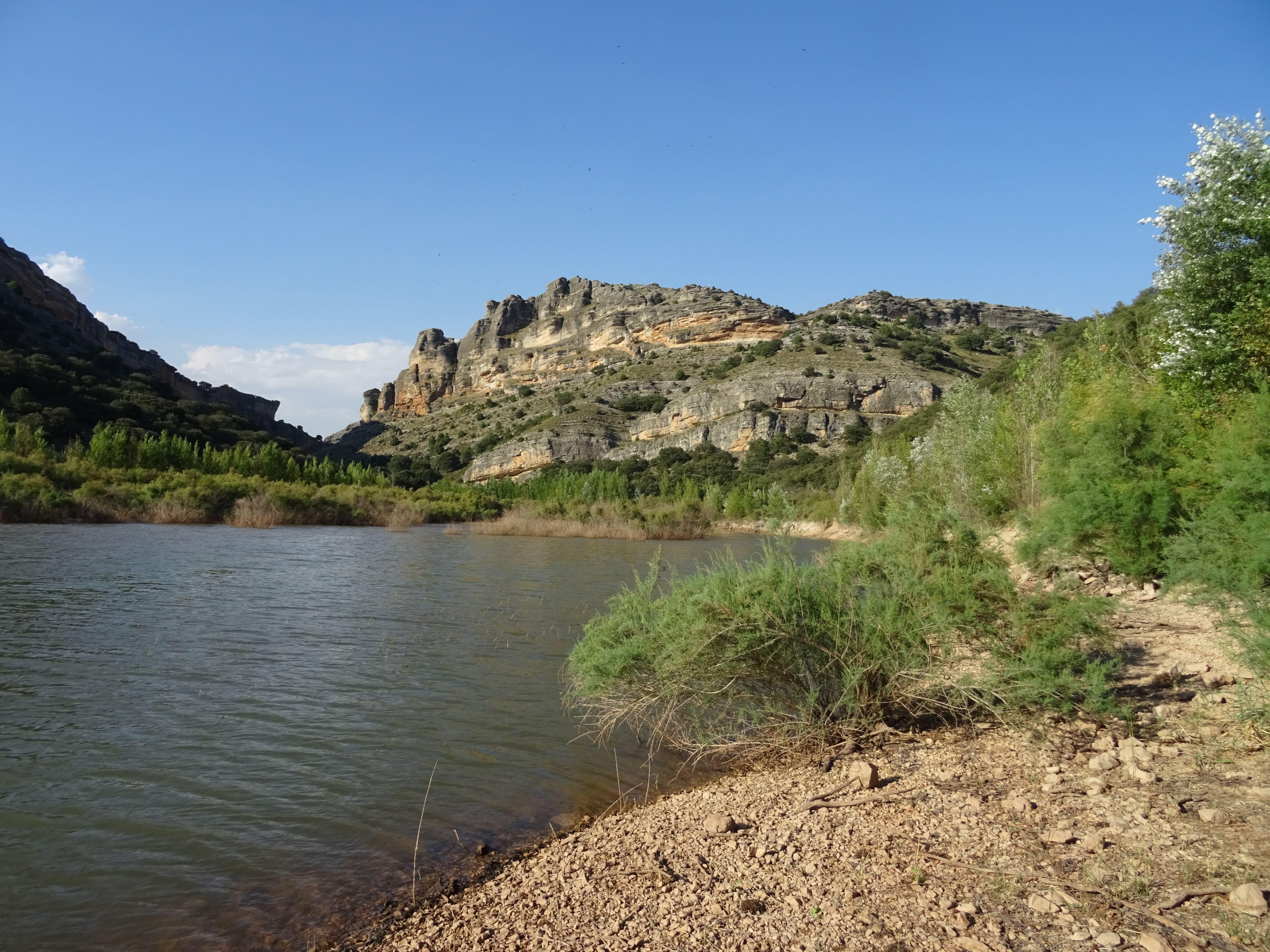 El embalse de El Atance, al fondo vemos las rocas que conforman la Hoz del río Salado, entre ellos se destaca el bosque de ribera seguido del encinar propio de esta zona