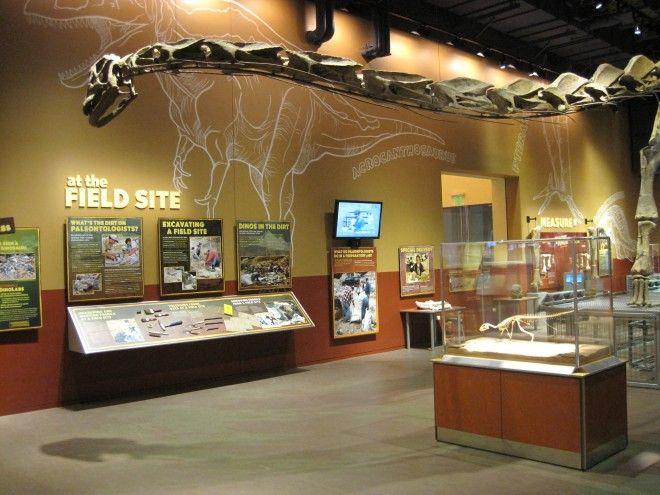 DinoLabs and DinoDig® Exhibit | Hunt Design with Design Island