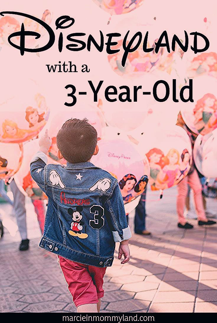 Photo of How to Survive Disneyland with a 3 Year Old: Tips, Tricks & Advice