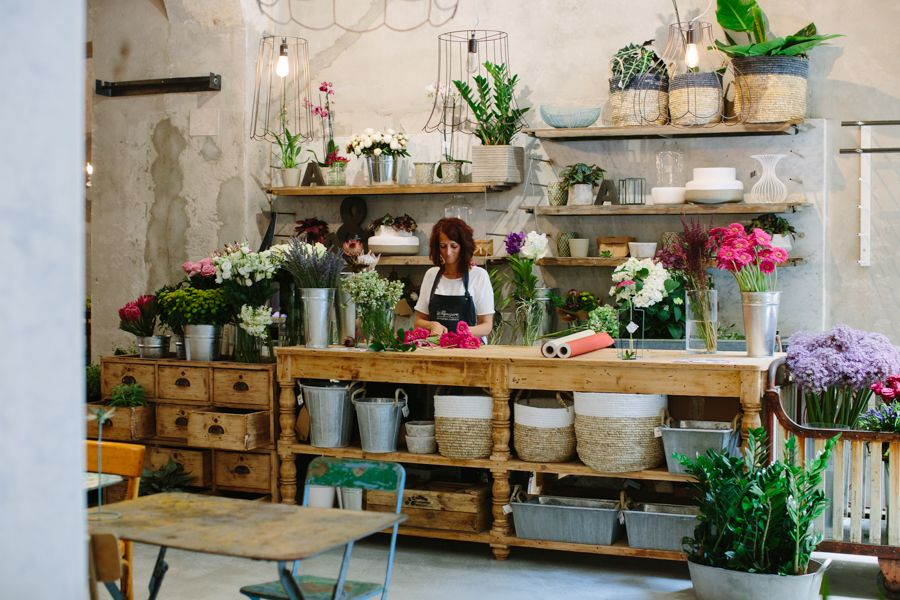 Artemisia firenze fiori cerca con google lovely places for Negozi di arredamento toscana