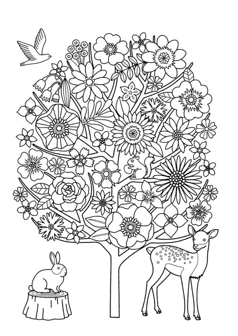 認知症予防に効果!?」記事の画像 | coloring - flowers