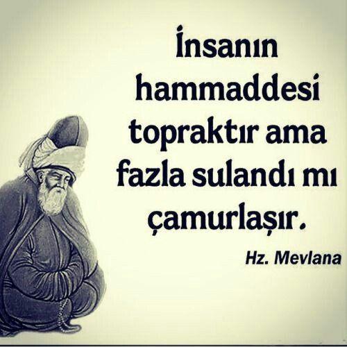 Mevlana Insan Ile Ilgili Sozleri Cool Words Inspirational Quotes Quotes