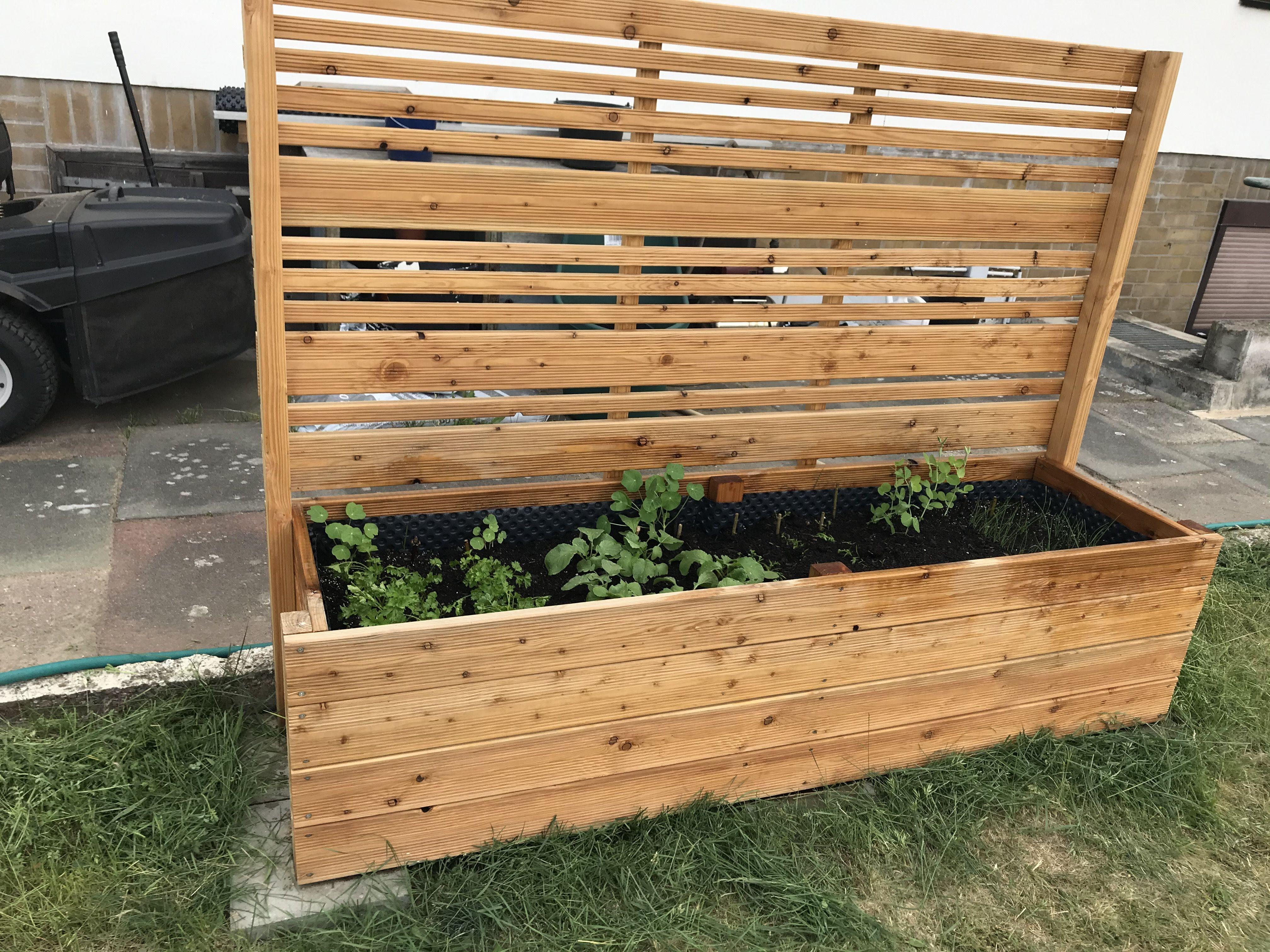 Hochbeet Mit Sichtschutz In 2020 Hochbeet Garten Sichtschutz