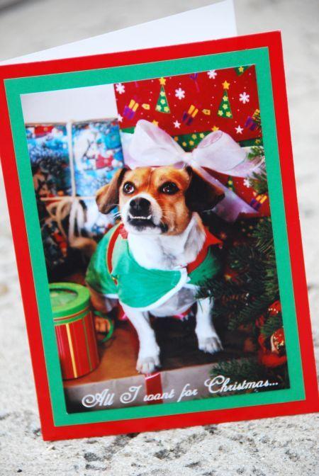 semi homemade christmas photo greeting card craft costco michael\u0027s